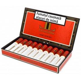 Trabucuri Licenciados Short Churchill Tubos 10